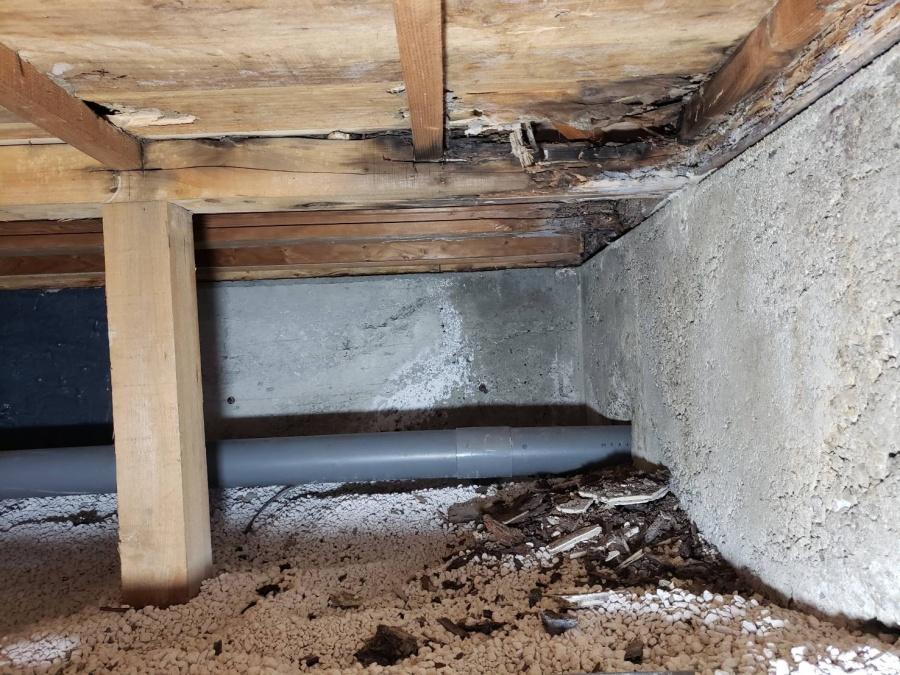大阪市内のトイレの床下を点検