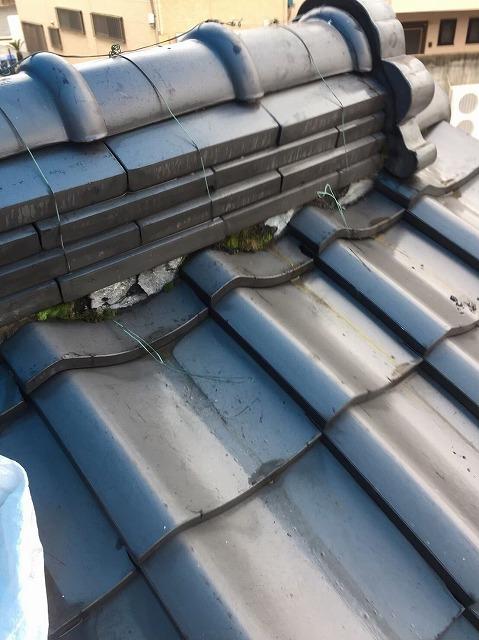 葛城市で下屋根にある棟の漆喰に植物発生