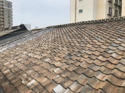 既存屋根2