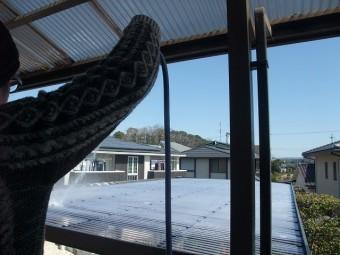 張り替えた波板屋根に散水テスト
