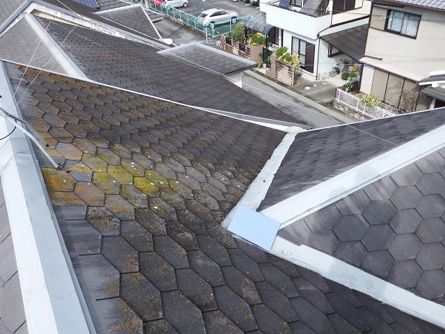 現場調査中の屋根の様子
