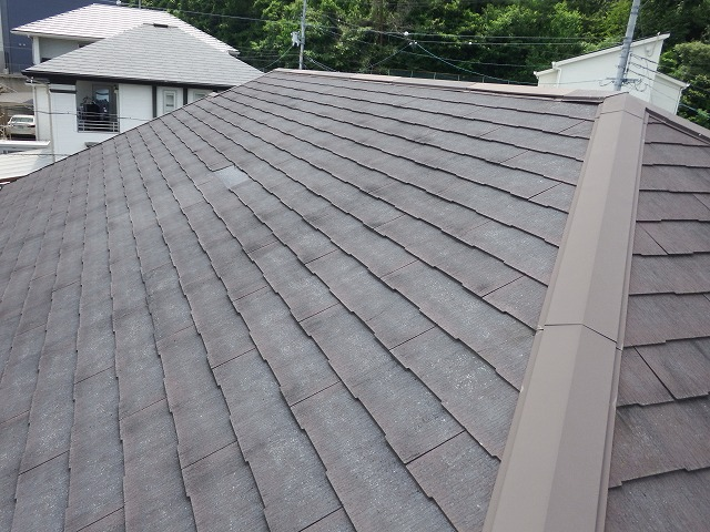大屋根の現場調査の様子