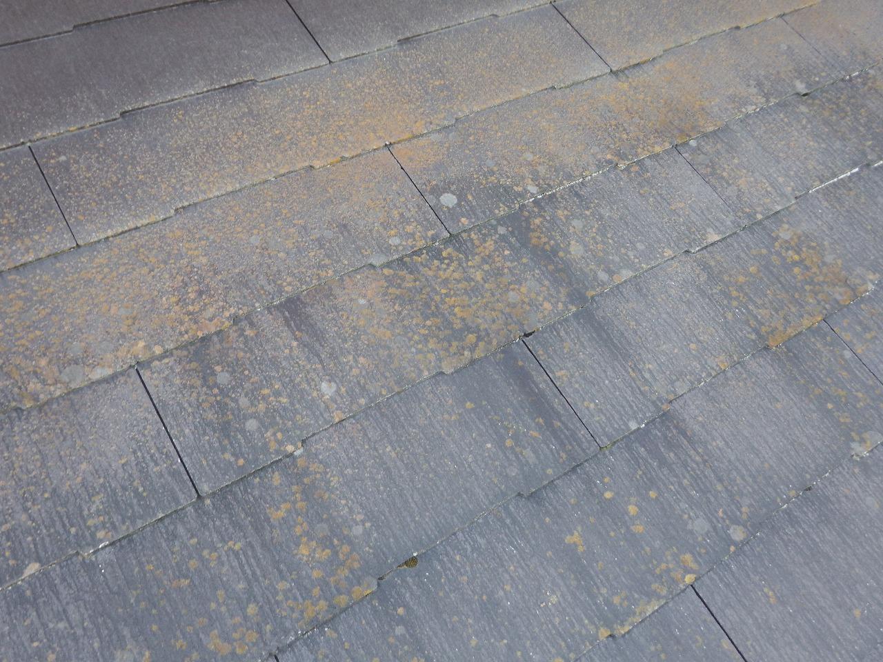 生駒市のスレート屋根、劣化したコロニアルNEO