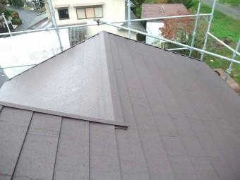 大屋根完成