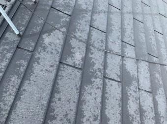屋根洗浄中の様子