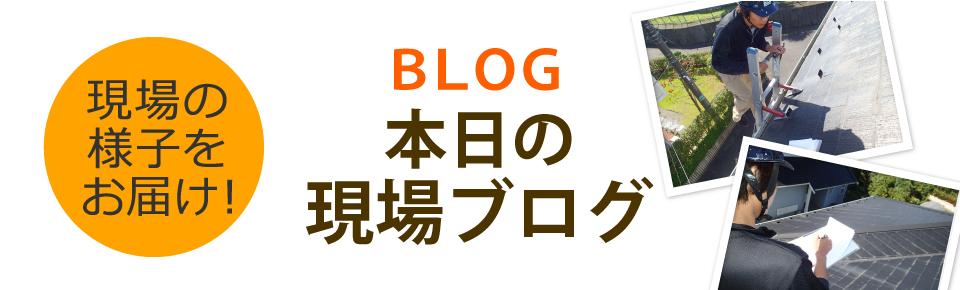 奈良市・大和郡山市・天理市やその周辺エリア、その他地域のブログ