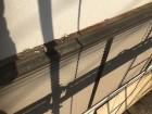 奈良市の店舗のモルタル壁
