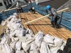 葺き土とバラ板と職人