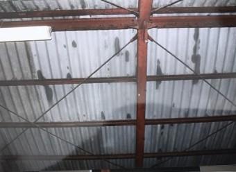 雨漏り部分の屋根裏